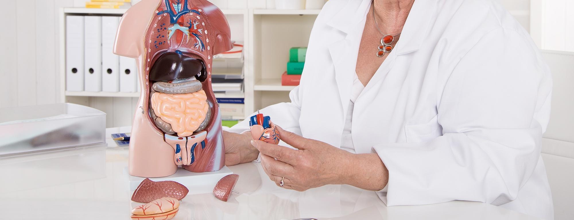 Sprechstunde für Leber- und Gallenerkrankungen